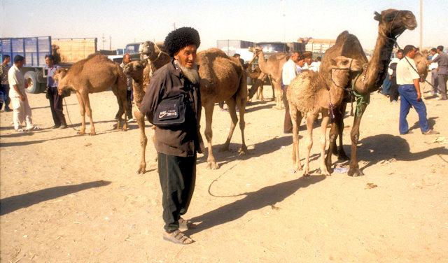 ashgabat_tolkuchka bazaar_camel market
