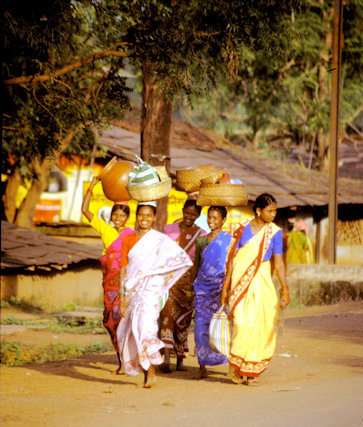 bastar_tribal women