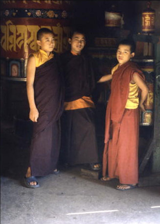darjeeling_ghoom monastery_young monks