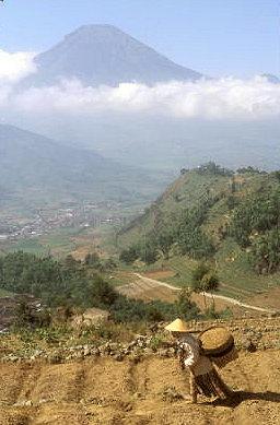 dieng plateau_kledung pass_2