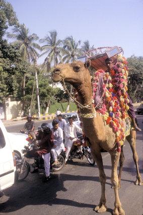 karachi_street traffic