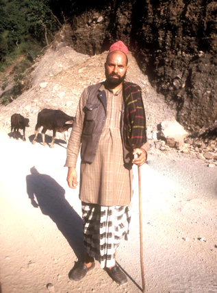 kuthnaur_gaddhi shepherd