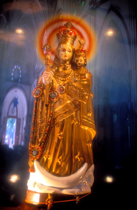 pondicherry_sacred heart church_shrine of madonna