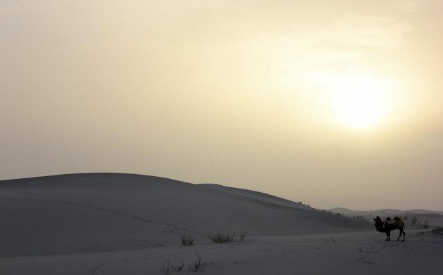 taklamakan desert_sunrise
