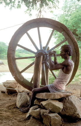 tamil nadu_manual labor