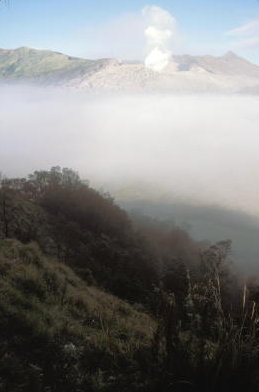 tengger massif_morning mist