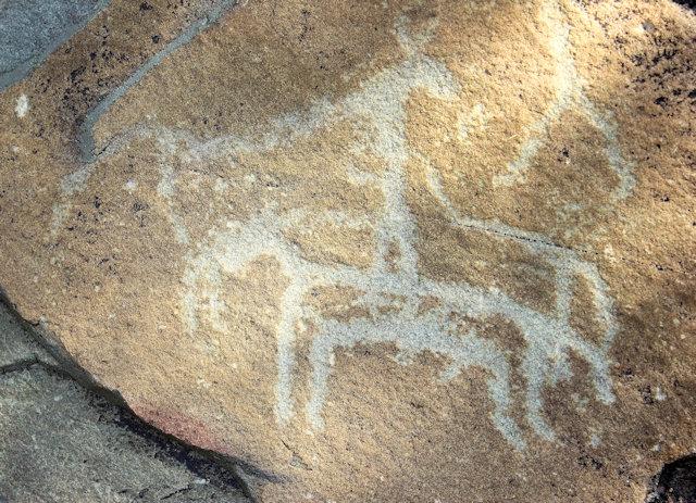 helan mountain_rock engravings