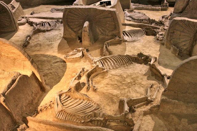 luoyang_chariot museum