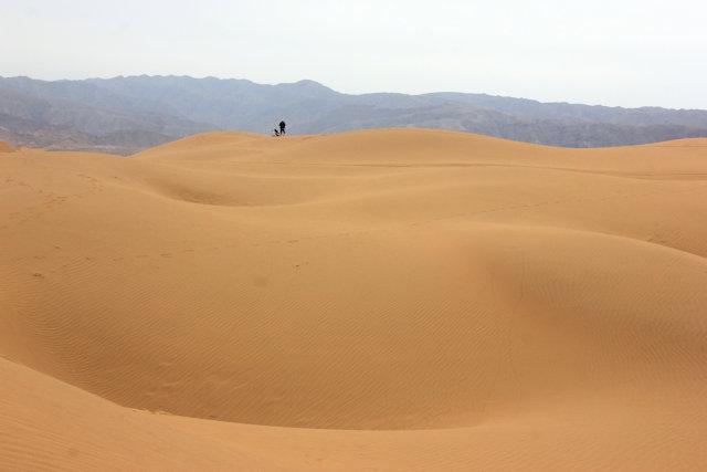 zhongwei_shapotou_tengger desert (5)