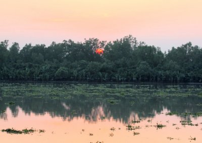 sunderbans_sunset