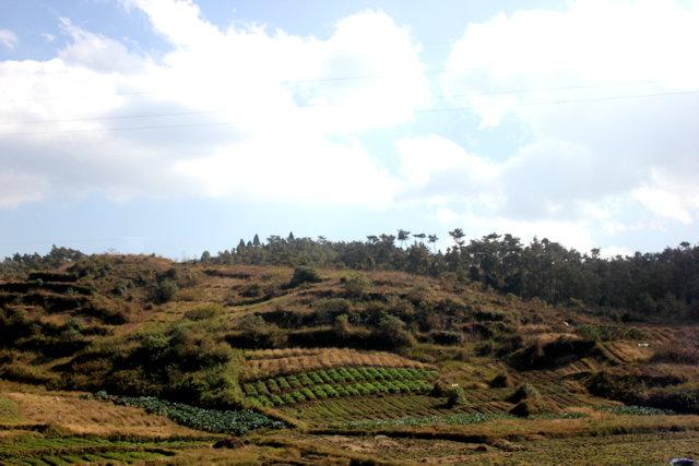 mawphlang_landscape