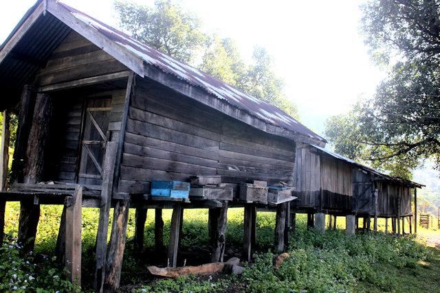 pukhuri_mishmi-mizo village
