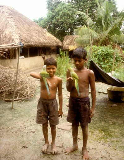 sunderbans_boys with parrots