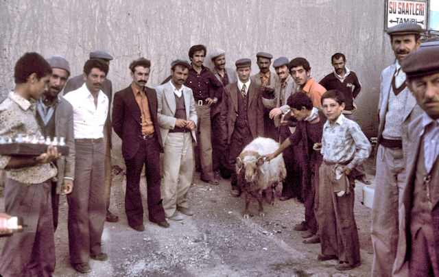 van_local men with ram