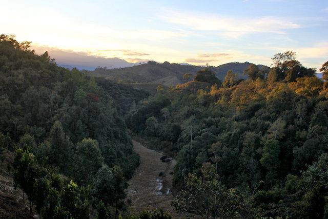 ziro_landscape