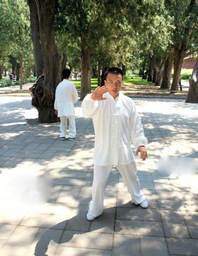 forbidden city_sun yat-sen park