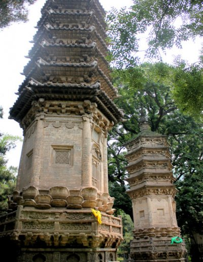 tanzhesi_forest of stupas_2