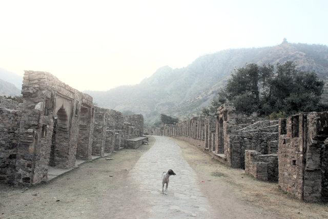 bhangarh_ruins