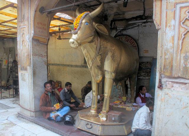 jaipur_tarkeshwar temple