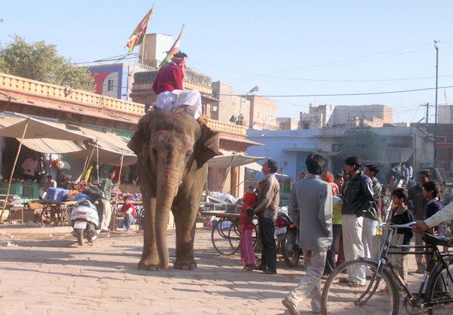jodhpur_street scene