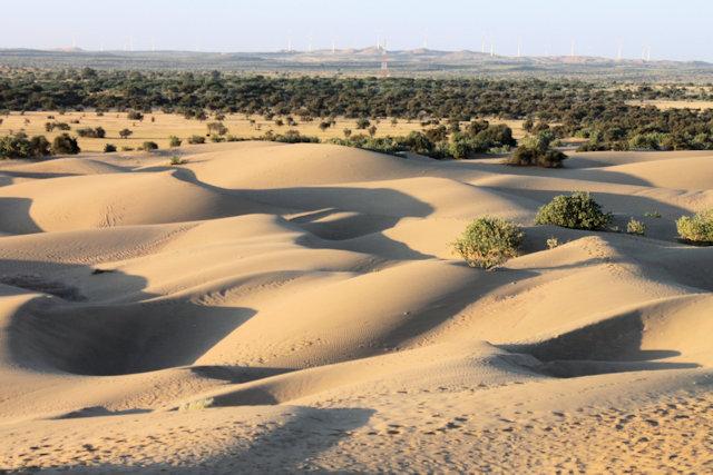 khurri_thar desert