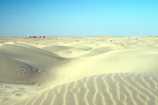 sam_thar desert sand dunes