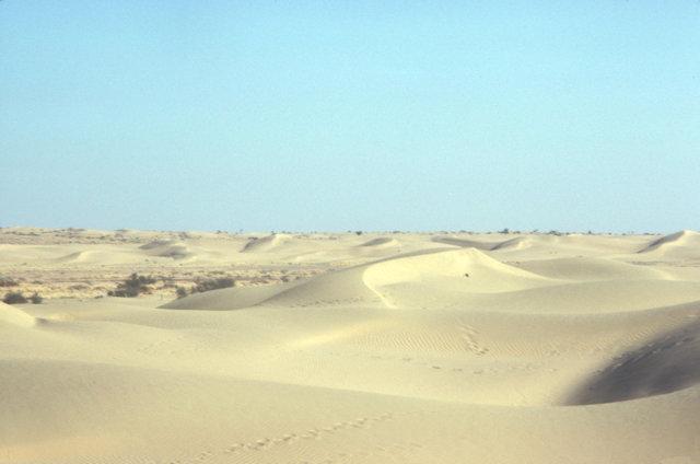 sam_thar desert sand dunes_2