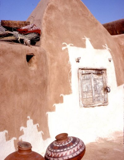 thar desert_domestic architecture