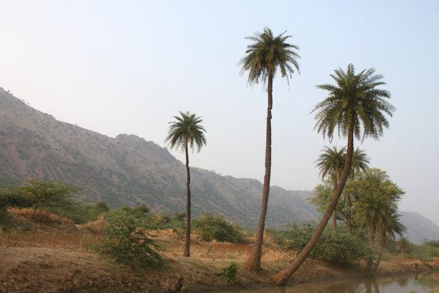 tordi garh_landscape