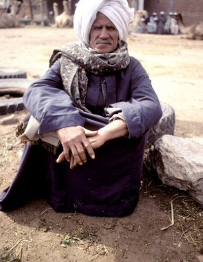 birqash_camel trader