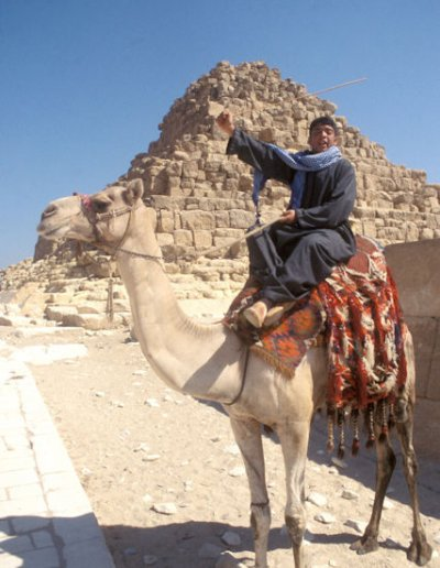camel driver at queen's pyramid