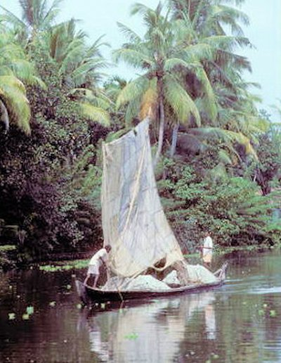 allepey_backwaters_3