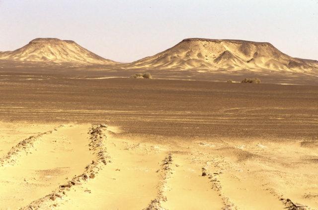 black desert_overview