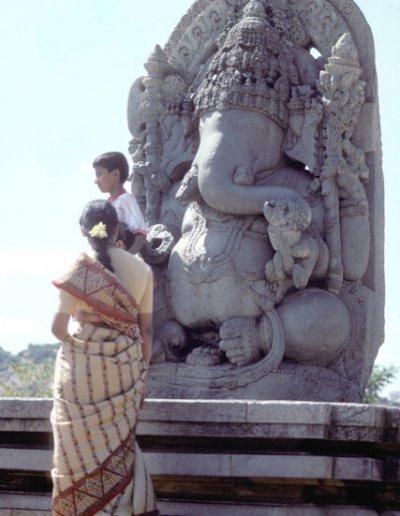 halebid_hoysaleshvara temple_6