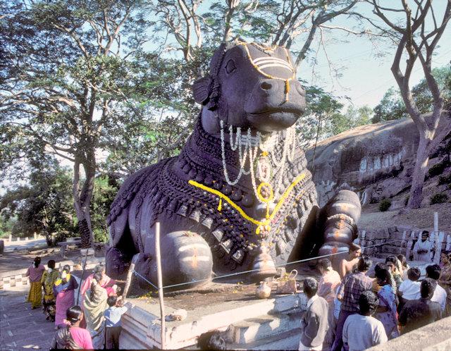 mysore_chaumundi hill_nandi statue