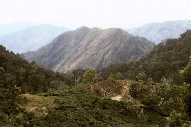 periyar_landscape
