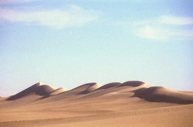 sand sea_dune field_3