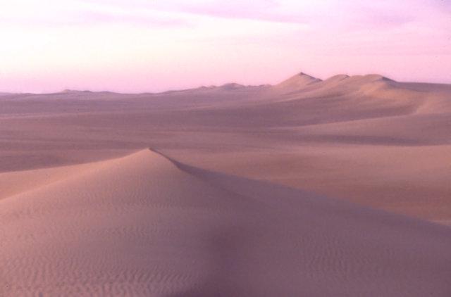 sand sea_dunes at dusk