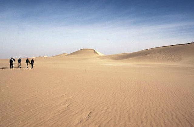 sand sea_visitors