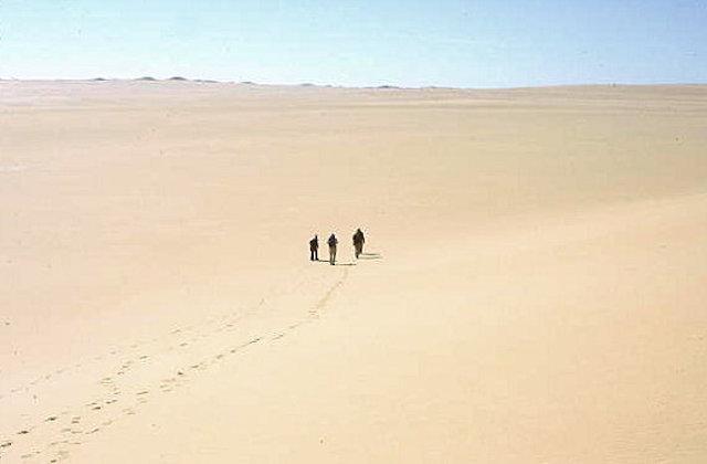 sand sea_visitors_2