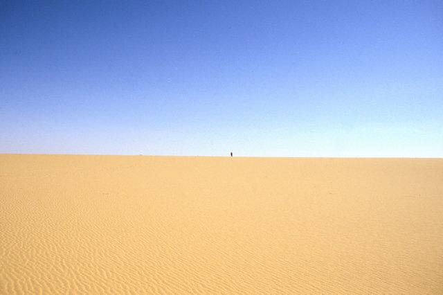 western desert_lone visitor