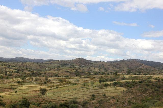 weita_landscape
