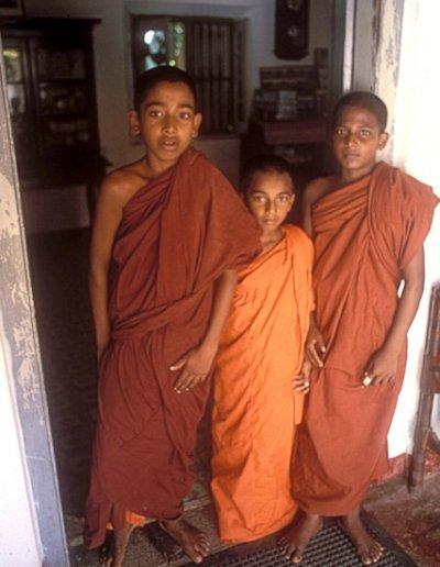 bentota_novice monks