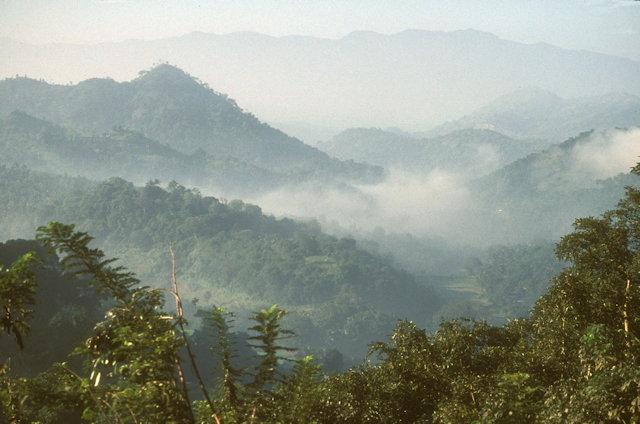dambana_landscape