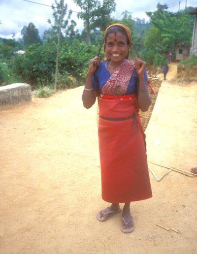 hatton_tea plantation worker