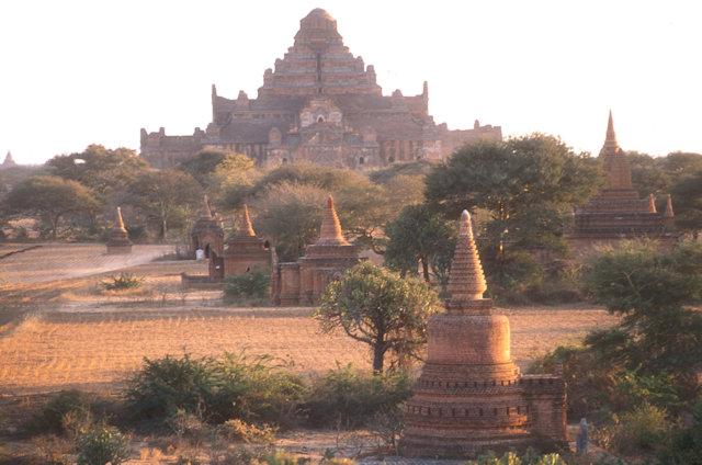 pagan_dhammayangyi temple