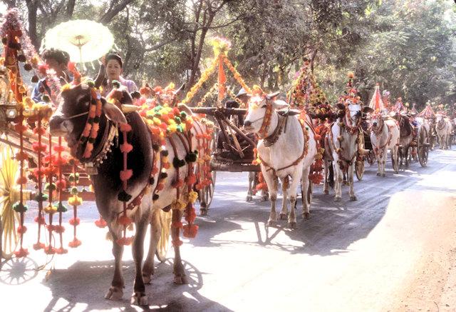 maymyo_buddhist procession